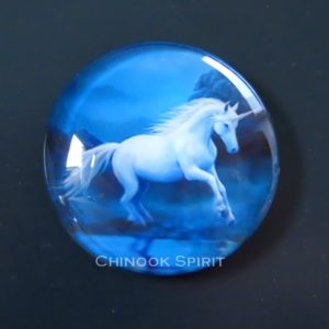 Aimant magnet licorne chinook spirit